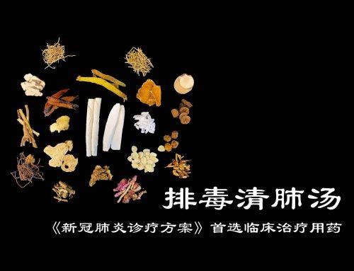 清肺排毒汤为什么是新冠肺炎中国方案首推中药?深八清肺排毒汤的前世今生